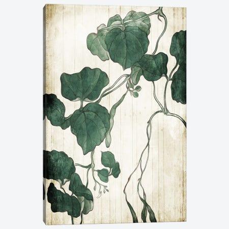 Hanging Leaves Canvas Print #MVI129} by Mlli Villa Canvas Wall Art