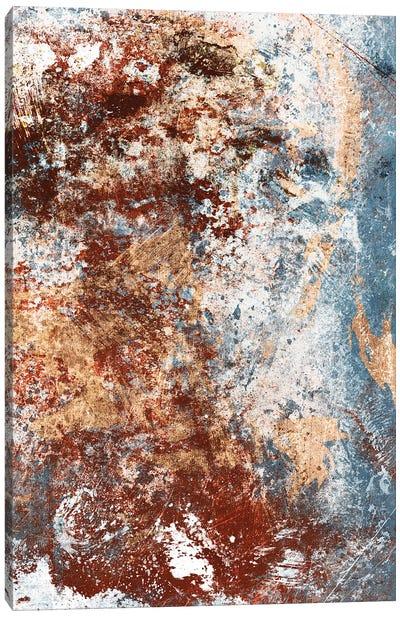 Rust in The Fog II Canvas Art Print