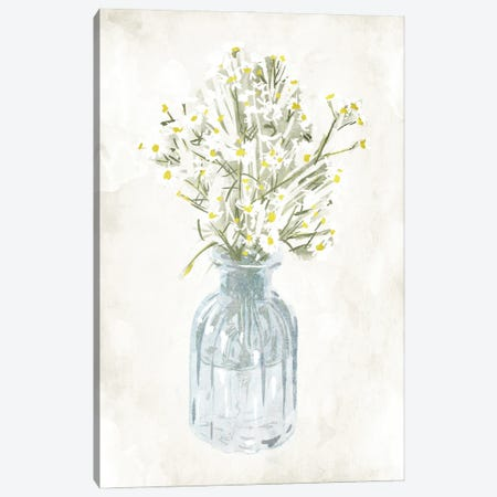 Water The Plants Canvas Print #MVI171} by Mlli Villa Canvas Print