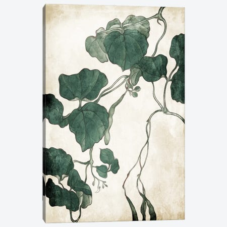 Hanging Leaves III Canvas Print #MVI175} by Mlli Villa Canvas Wall Art