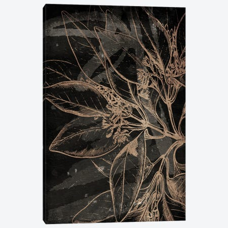 Muted Golden Abstract Floral Mate Canvas Print #MVI178} by Mlli Villa Art Print