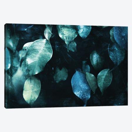Teal Hanging Leaves Canvas Print #MVI182} by Mlli Villa Canvas Wall Art