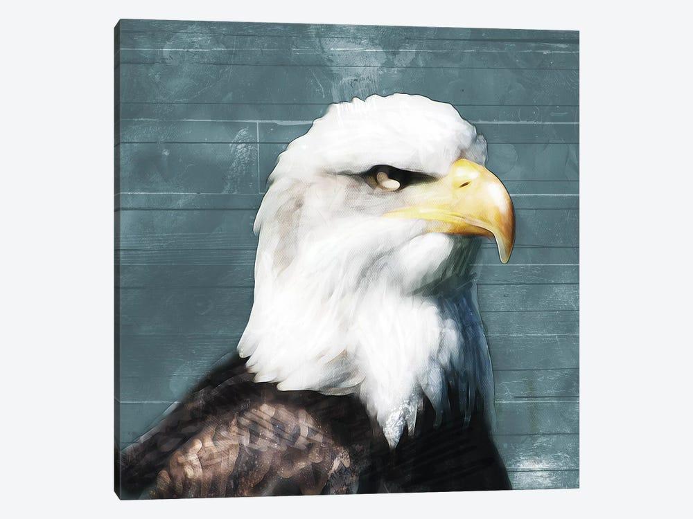 Eagle Eye by Mlli Villa 1-piece Art Print