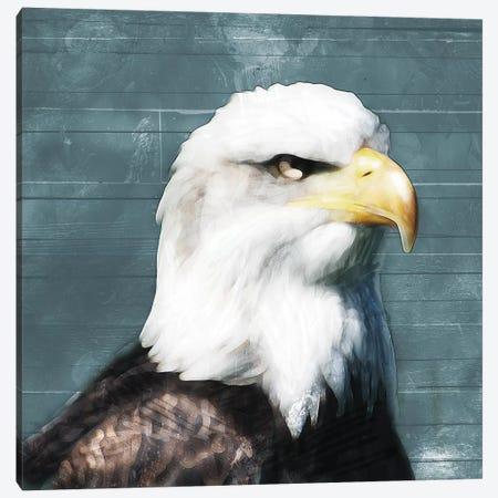 Eagle Eye Canvas Print #MVI20} by Mlli Villa Canvas Artwork