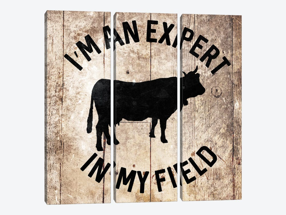 In My Field by Mlli Villa 3-piece Canvas Art