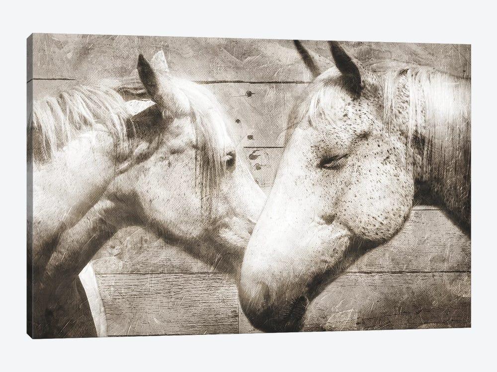 Love Horses by Mlli Villa 1-piece Canvas Art
