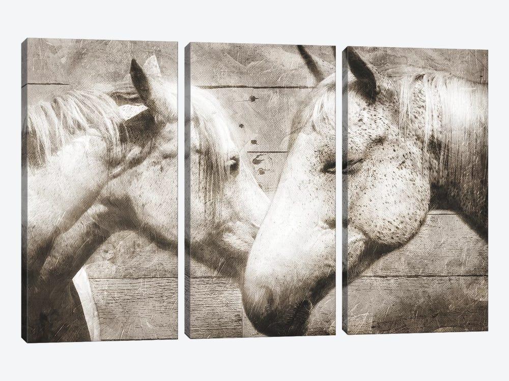 Love Horses by Mlli Villa 3-piece Canvas Artwork
