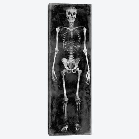 Skeleton II Canvas Print #MWA10} by Martin Wagner Canvas Art