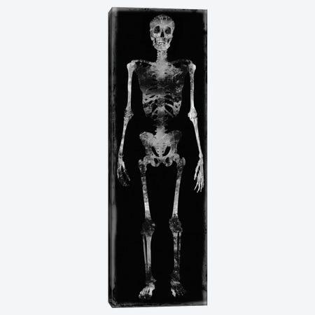 Skeleton III Canvas Print #MWA11} by Martin Wagner Canvas Artwork