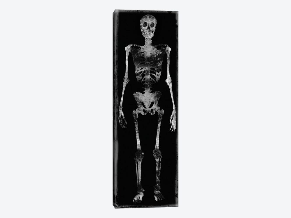 Skeleton III by Martin Wagner 1-piece Canvas Wall Art