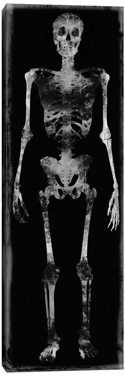 Skeleton III Canvas Art Print