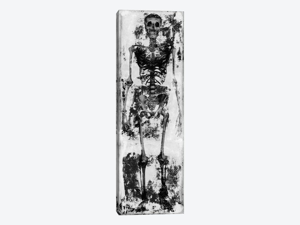 Skeleton IV by Martin Wagner 1-piece Canvas Art Print