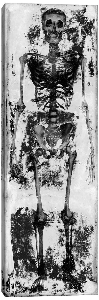 Skeleton IV Canvas Art Print