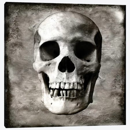 Skull I Canvas Print #MWA13} by Martin Wagner Canvas Wall Art