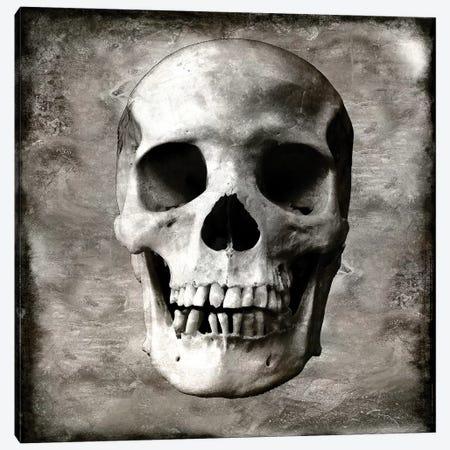 Skull I Canvas Print #MWA13} by Martin Wagner Canvas Wall Art