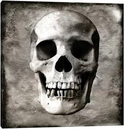 Skull I Canvas Art Print