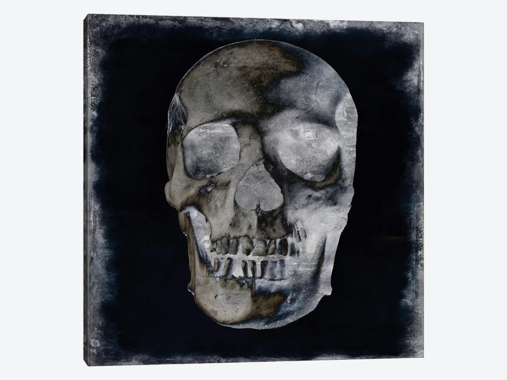 Skull II by Martin Wagner 1-piece Canvas Print