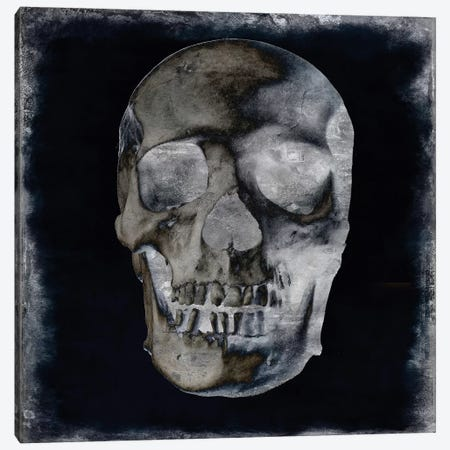 Skull II Canvas Print #MWA14} by Martin Wagner Canvas Print