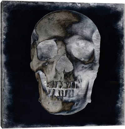 Skull II Canvas Art Print