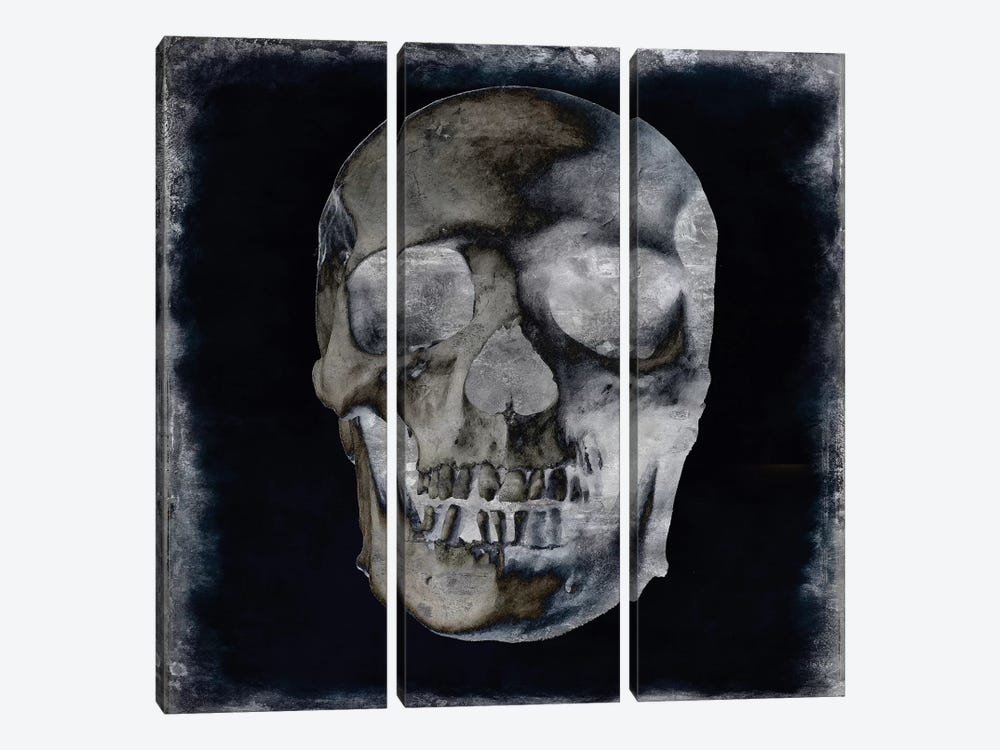 Skull II by Martin Wagner 3-piece Art Print