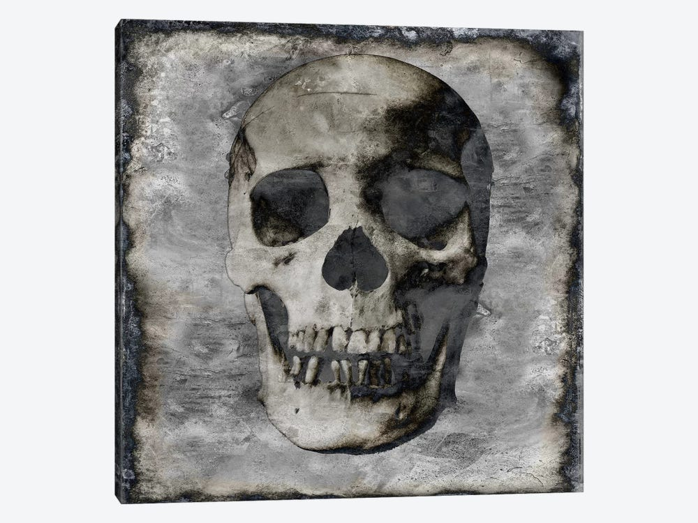 Skull III by Martin Wagner 1-piece Canvas Wall Art