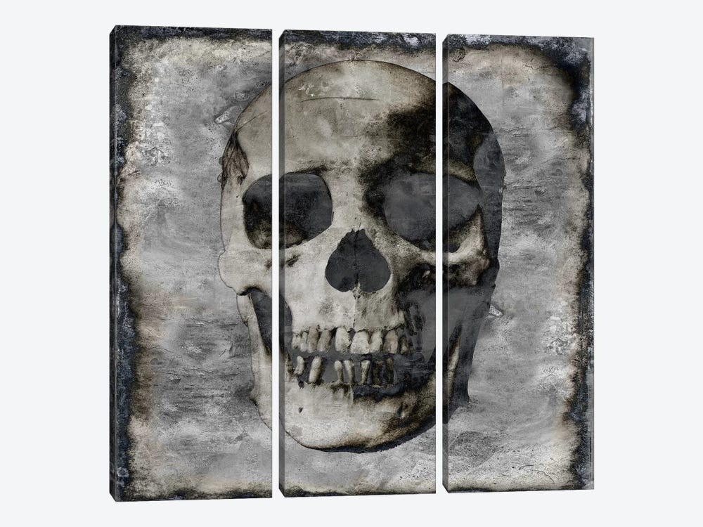 Skull III by Martin Wagner 3-piece Canvas Art