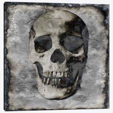 Skull III Canvas Print #MWA15} by Martin Wagner Art Print