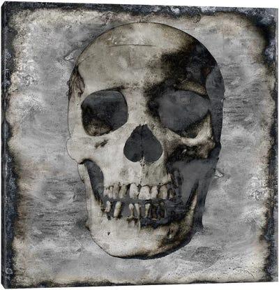 Skull III Canvas Art Print