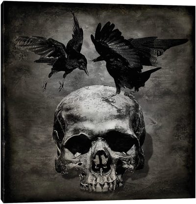Skull With Crows Canvas Art Print