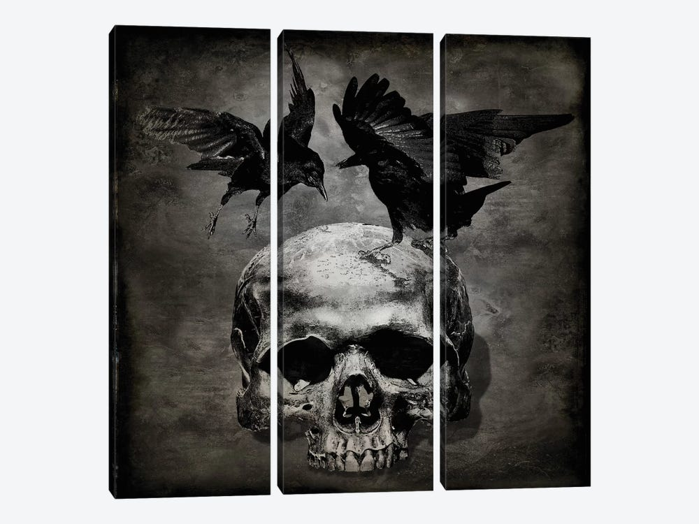Skull With Crows by Martin Wagner 3-piece Canvas Art Print