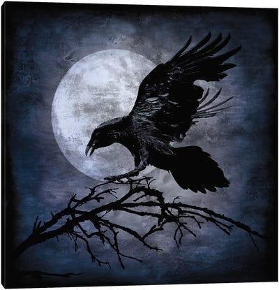 Crow Canvas Print #MWA1