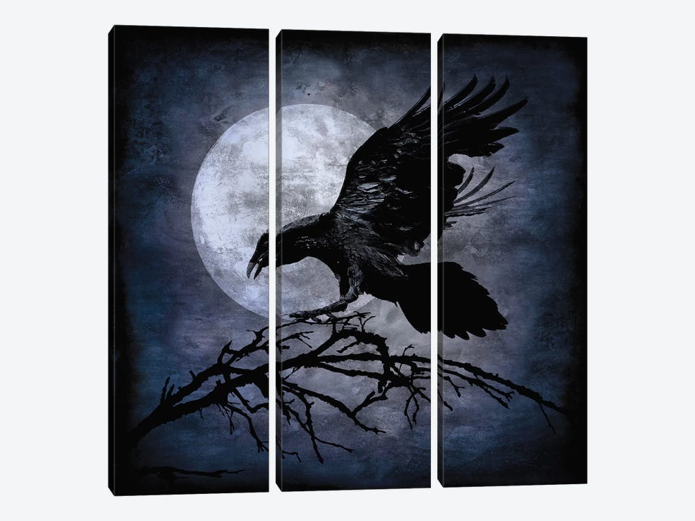 Crow by Martin Wagner 3-piece Canvas Wall Art