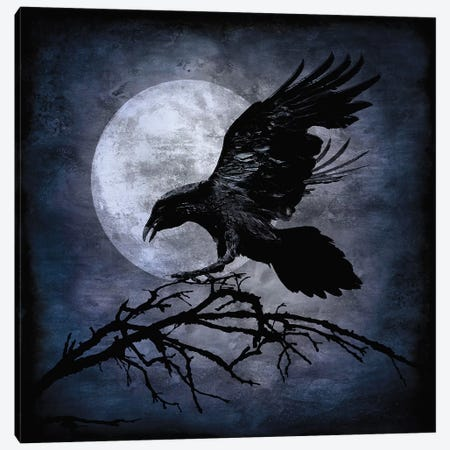 Crow Canvas Print #MWA1} by Martin Wagner Canvas Artwork