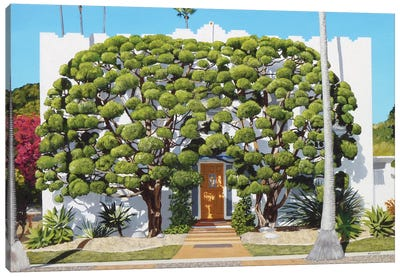 Bodhi Tree House Canvas Art Print