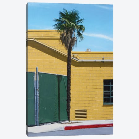 Trachycarpus Fortunei Canvas Print #MWD55} by Michael Ward Canvas Art