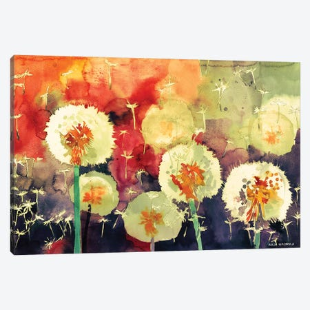 Dandelions Canvas Print #MWR12} by Maja Wronska Canvas Art Print