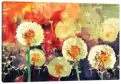 Dandelions Canvas Art Print