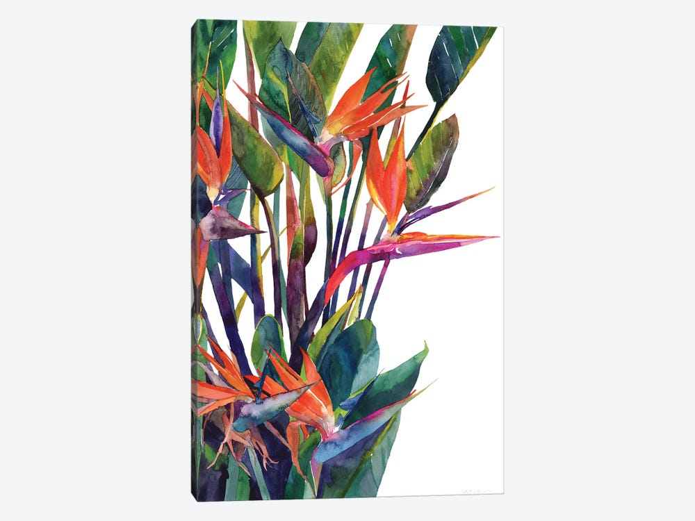 Bird Of Paradise by Maja Wronska 1-piece Canvas Art