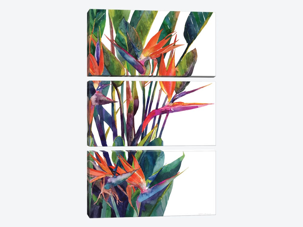 Bird Of Paradise by Maja Wronska 3-piece Canvas Wall Art