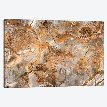 Dna On Mars Canvas Print #MXC7} by Maximiliano Casal Canvas Wall Art