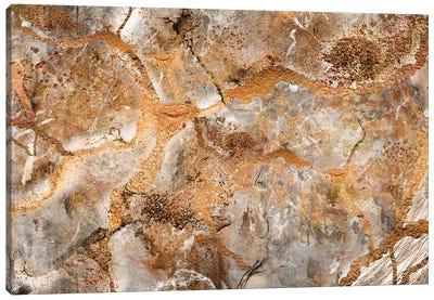 Dna On Mars Canvas Art Print