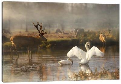 English Scene Canvas Art Print