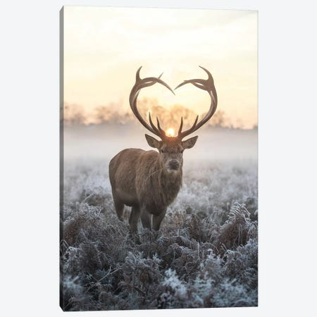 Heart Shaped Antlers V Canvas Print #MXE25} by Max Ellis Canvas Wall Art
