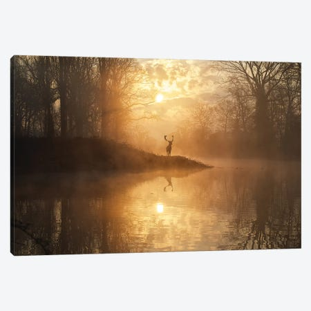 Hidden Realm II Canvas Print #MXE27} by Max Ellis Canvas Artwork