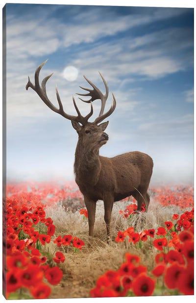 Poppy Stag Canvas Art Print