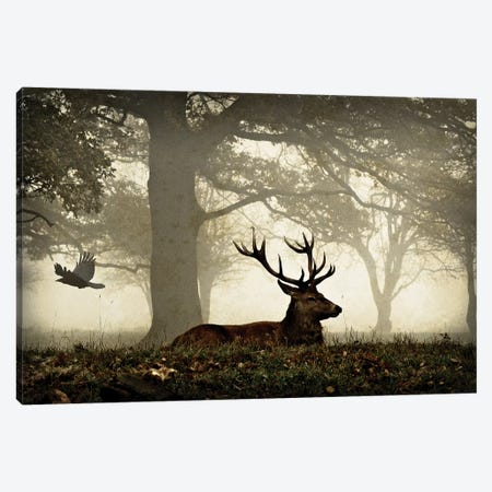 Stag And Crow Texture Canvas Print #MXE51} by Max Ellis Canvas Art