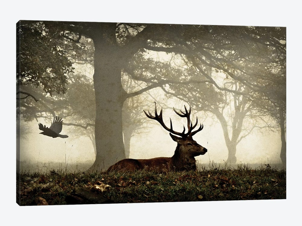 Stag And Crow Texture by Max Ellis 1-piece Canvas Art