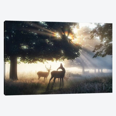Boys Of Summer Canvas Print #MXE68} by Max Ellis Art Print