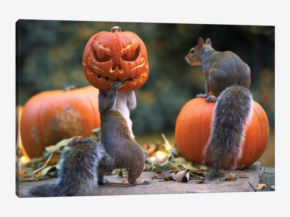 The Pumpkin Shot Copy by Max Ellis 1-piece Canvas Art