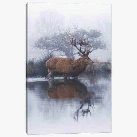 Mist And Hawthorn Canvas Print #MXE83} by Max Ellis Canvas Print